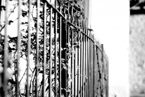 fence-619860_640